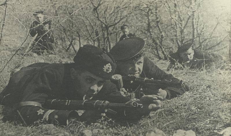 Козероги будут фронтовые фотографии 1941-45 гг котенка Москве